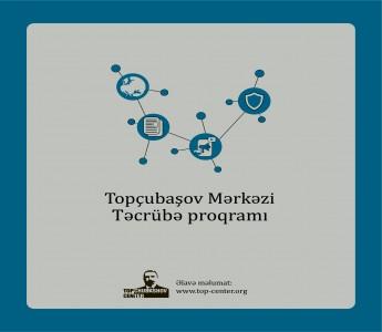 Topchubashov Internship Program